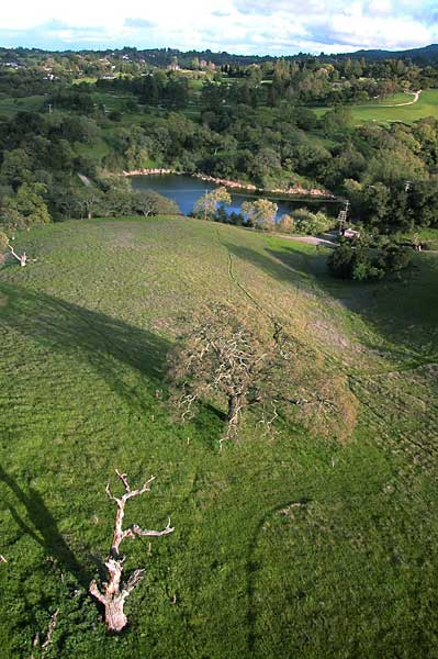 Photo by Scott Haefner: arastradero03
