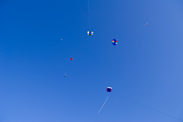 Photo by Scott Haefner: Kites Converging
