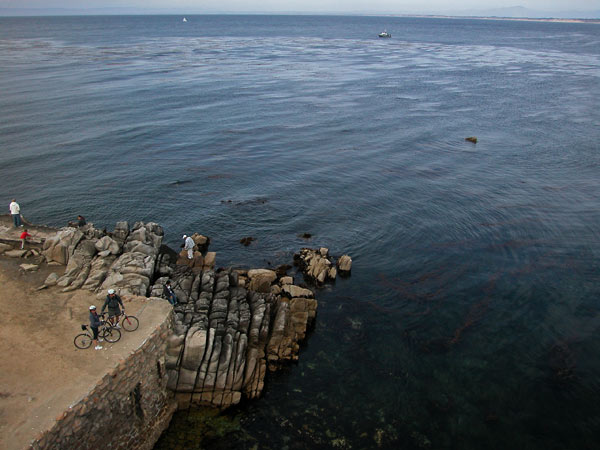 Photo by Scott Haefner: pacificgrove03