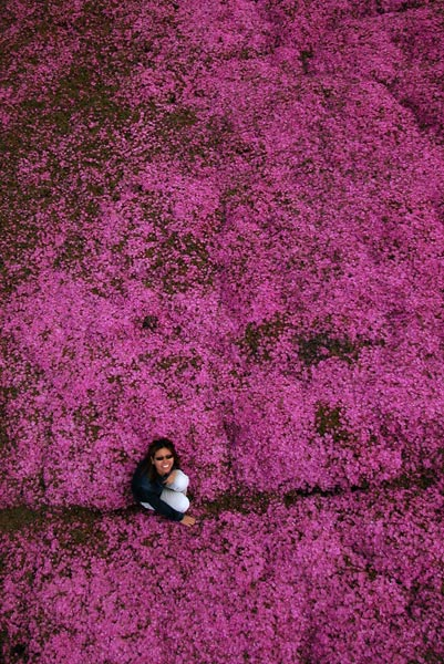 Photo by Scott Haefner: Pink Carpet
