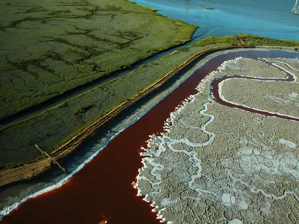 Photo by Scott Haefner: saltpond16