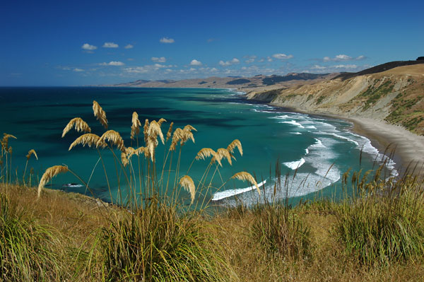 Photo by Scott Haefner: Wairarapa Coastline