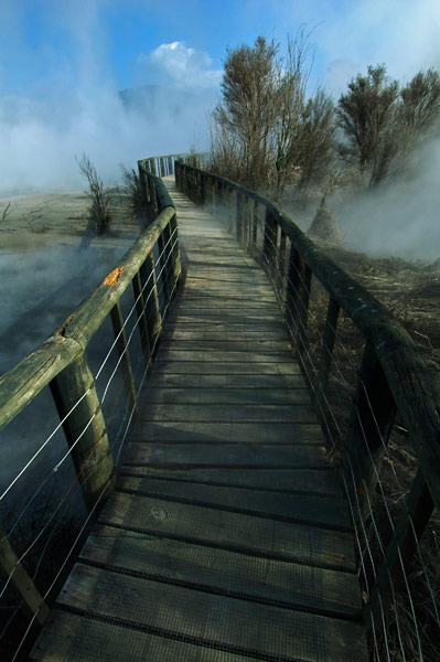 Photo by Scott Haefner: Kairua Boardwalk