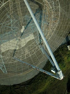 Photo: stanforddish04