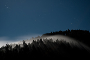 Photo by Scott Haefner: Piercing Fog