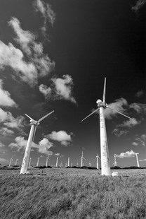 Photo: Stagnant Windmills