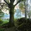 Thumbnail: Lake District