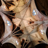 Thumbnail: Web of Decay