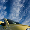 Thumbnail: Yellow Bug, Blue Sky